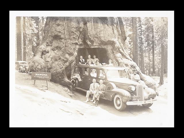 Photo Restoration Service and Photo Retouching